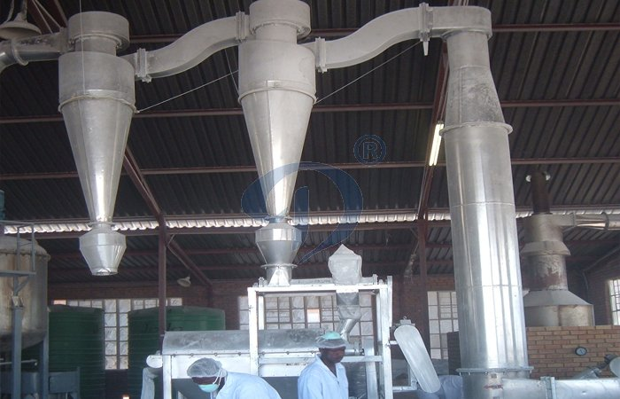 cassava root starch production