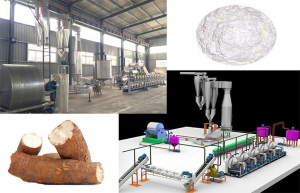 cassava flour production plant