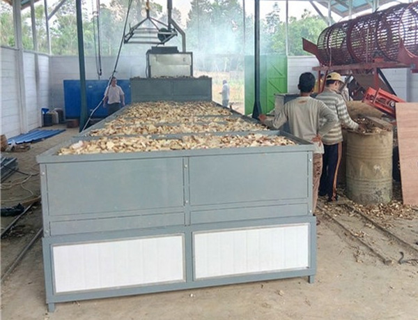 cassava chips dryer