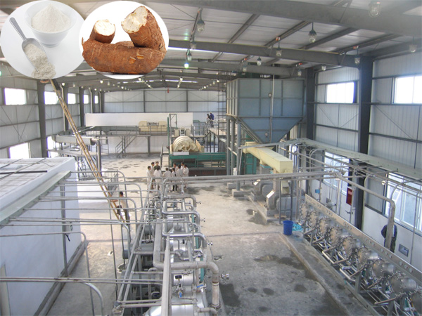 Cassava starch processing plant price analysis
