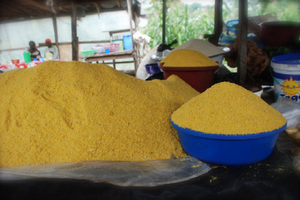 how profitable is garri processing business in nigeria