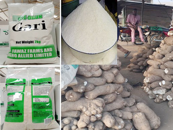 What's the method of processing of cassava to garri?