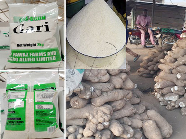 Mechanical garri processing is promising in Nigeria