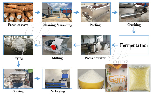 significance of fermentation in garri processing