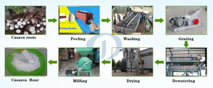 cassava flour production