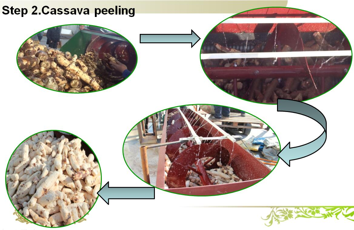 bioplastic making from cassava peels And, while pla continues to make 'leaps and bounds' in a broader range  bags  made from a bioplastic that is based on cassava root, a cheap.