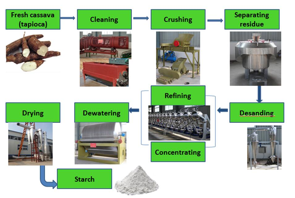 starch production from cassava